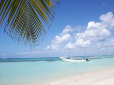 Saona Island - Punta Cana.. fabulous excursion