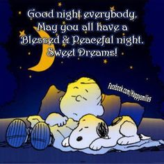 It's all about Snoopy, Charlie Brown, and the rest of the Peanuts gang! Peanuts Gang, Peanuts Cartoon, Peanuts Comics, Good Night Everybody, Good Morning Good Night, Charlie Brown Peanuts, Charlie Brown And Snoopy, Dormir Gif, Snoopy Quotes