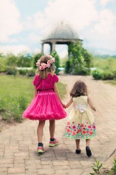 New free stock photo of summer garden cute - Stock Photo