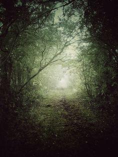 juliancalverley:  #iphoneonly - Public bridleway under Autumn fog, near Sandon, Hertfordshire.