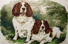 Springer Spaniel pair dogs cross stitch kits