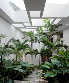 indoor garden separates living room and bedroom. In a more narrow hallway: cover the floor with stone slates and put plants in pots (also hanging)