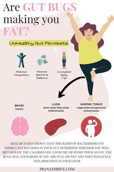 Continue reading to learn about the surprising connection between your gut bacteria and your weight loss efforts. Plus discover the top ketogenic foods. Thyroid Health, Gut Health, Health And Nutrition, Health And Wellness, Health Fitness, Health And Beauty Tips, Health Tips, Gut Brain, Metabolic Syndrome