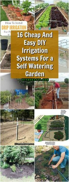 16 Cheap And Easy DIY Irrigation Systems For A Self Watering Garden 16 Inexpensive . - 16 Cheap And Easy DIY Irrigation Systems For A Self Watering Garden 16 Cheap and easy DIY irrigatio - Raised Garden Beds Irrigation, Garden Irrigation System, Irrigation Systems, Watering Raised Garden Beds, Hydroponic Gardening, Hydroponics, Gardening Tips, Organic Gardening, Gardening Gloves