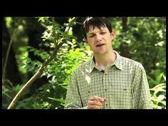 Species profiles | Appalachian Ohio Weed Control Partnership | Page 2