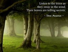 """Listen to the trees as they sway in the wind. Their leaves are telling secrets."" -Vera Nazarian"