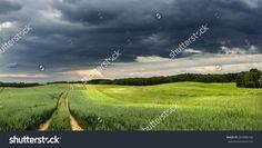 Stormy Fields Landscape Panorama In North Poland/ Grain Fields Storm Стоковые фотографии 264988154 : Shutterstock Splashback, Poland, Fields, Photo Editing, Royalty Free Stock Photos, Country Roads, Landscape, Illustration, Editing Photos