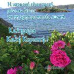 Αποκλειστικές Εικόνες Τοπ για Καλή Εβδομάδα.! - eikones top Plants, Planters, Plant
