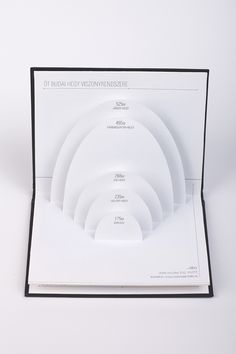 Pop-up book: Budapest Infographics on Behance by Livia Hasenstaub