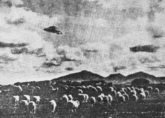 1954  -  Australia from Old UFO Photos 1870-2008 archive. http://old-ufo-photos.latest-ufo-sightings.net/2010/02/1953-1956.html