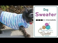 How To Crochet Dog Sweater, My Crafts and DIY Projects