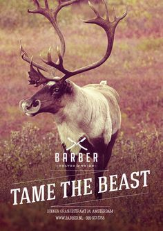 Barber Shaves & Trims: Tame the beast, Reindeer