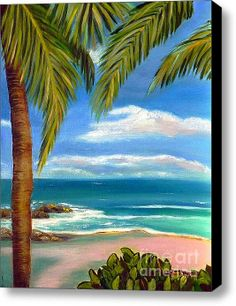 New Deal thru 1/29 Limited Time Promotion: Costa Rica Rocks   Costa Rica Seascape  Stretched Canvas Print