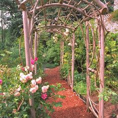 Nice arbor you can build with cut-down trees and branches.