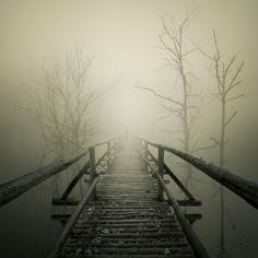 Así debe ser el camino, despues de la muerte...