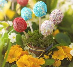 Young and old will love these glitzy egg-shaped lollipops made from chocolate sponge cake
