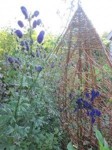 Angela Morley garden design and willow structures