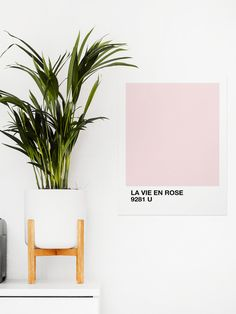 la vie en rose Art Print by shvvdes Modern Wall Art, Large Wall Art, Framed Wall Art, Wall Art Prints, Framed Prints, Bedroom Frames, Bedroom Decor, Wall Decor, College Girl Apartment