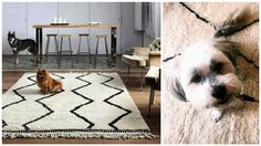 Your rug from Sukhi is made from the finest quality yarns and wools. Every rug goes through a careful quality check before it reaches you. As a leading brand of handmade rugs, we just can't compromise on quality. And pets know it!  Beni Ourain rugs are considered the most prestigious in all of Morocco and are now trendy everywhere. They are made from one of the finest wool on earth, from the Berber's sheep in the Atlas Mountains.