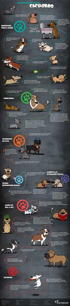 Os benefícios de se ter um cão