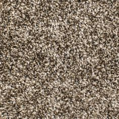 Stainmaster Essentials Gaucho Textured Carpet 1 29 Sq Ft