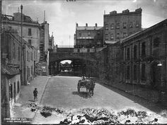 Argyle Cut at the Rocks,Sydney at the turn of the Century. Old Photos, Vintage Photos, The Rocks Sydney, Sydney City, Darling Harbour, Historical Images, View Image, Tourism, Old Things