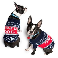 Dog sweaters for democrats