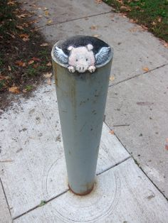 I love David Zinn.  Ann Arbor local turning my town into a cooler place. My favorites are always the ones with the Piggies and Terrapins. :)  David Zinn | Illustration, Design & Street Art