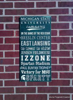 Michigan State University (MSU) Painted Wood Sign