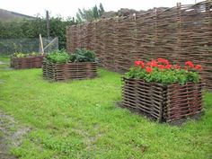 flowerbeds and fence from willow