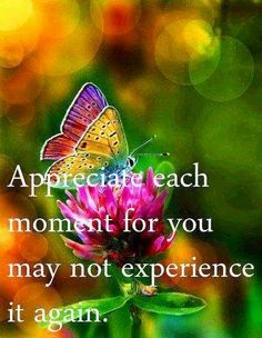 Appreciate each moment quote via Carol's Country Sunshine on Facebook
