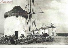 Windmill 1929 photo