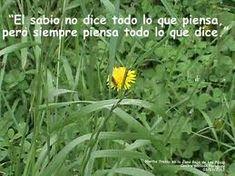 Este es el Camino para Ser Feliz – Me Acompañas http://www.yoespiritual.com/inteligencia-espiritual/este-es-el-camino-para-ser-feliz.html