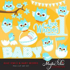 Blue Owls Clipart with Baby Wording. Cute Baby owls, new baby, look who's turning 1, baby basket, bunting banner and cute owls graphics by MUJKA on Etsy