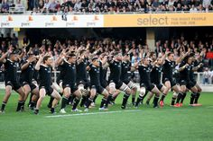 The All Blacks perform the haka  during The Rugby Championship match between the New Zealand All Blacks and the Australian Wallabies at Fors...