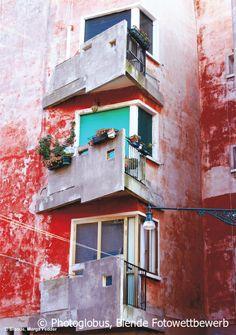 Frische farbe, Blende Fotowettbewerb