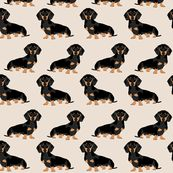 Tan Wiener Dog Fabric Doxie Dachshund Weiner Pet by SpoonflowerYou can find Wiener dogs and more on our website.Tan Wiener Dog Fabric Doxie Dachshund Weiner Pet by Spoonf. Dachshund Art, Dachshund Puppies, Pet Dogs, Wiener Dogs, Daschund, Dachshund Sweater, Cãezinhos Bulldog, Animals And Pets, Cute Animals