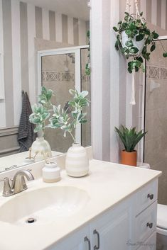 The fastest way to makeover a bathroom is to add plants! They transform any space