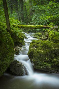 Chastelbachtal, Grellingen Schweiz Waterfalls, River, Outdoor, Long Exposure, Switzerland, Outdoors, Outdoor Games, The Great Outdoors, Rivers