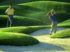 Golf - la beauté du geste !