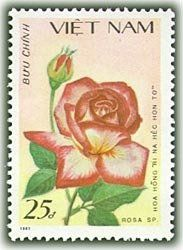 Stamp: Rinahechonto's Rose (rosa Sp. Rinahechonto) (Vietnam) (Roses) Mi:VN 1892,Yt:VN 859