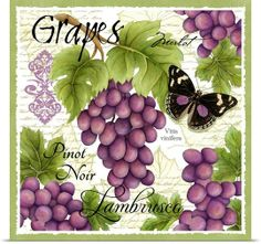 Botanical Grape