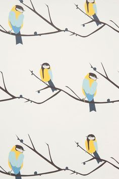 Juneberry Bird - Kids Wallpapers - Kids Bedroom Ideas - Children's Room Decorating (houseandgarden.co.uk)