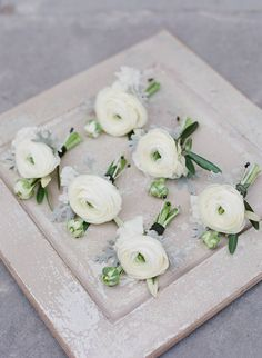 The groomsmen and family members will wear boutonnieres of white ranunculus (single blooms) accented by bay laurel and dusty miller and wrapped in light gold/champagne ribbon with the stems showing.