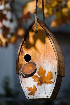 Unique BirdHouse Ideas http://socialaffiliate.wix.com/bird-houses http://buildbirdhouses.blogspot.ca/ every one needs to see this http://screw95.net/