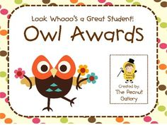 $2.50 Twenty different colorful, eye-catching owl awards are included!