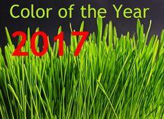ZIELONY - kolorem 2017 roku