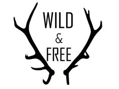 Wild and Free Antler Decal by BerthmarkVinyl on Etsy