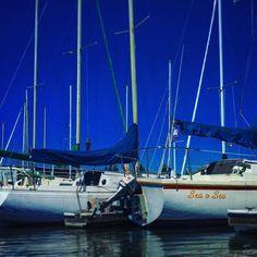 I'd rather be sailing! @stocktonsailing #sail #sailor #sailboat #sailboats #deltasailing #stocktonsailingclub #sailing #sailors #boat #boats #boatlife #boatporn #sailporn #portofstockton #deltasailing #delta #deepwaterchannel #stockton #stocktonca by bitterdonkey
