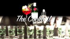 How to make a Cosmopolitan Cocktail By Burak Kapson